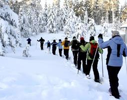 Winter-Erlebnistour mit Winter-Erlebnistour & Sauna