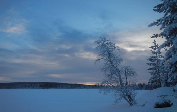 husky-abenteuer-trip-asele-daemmerung
