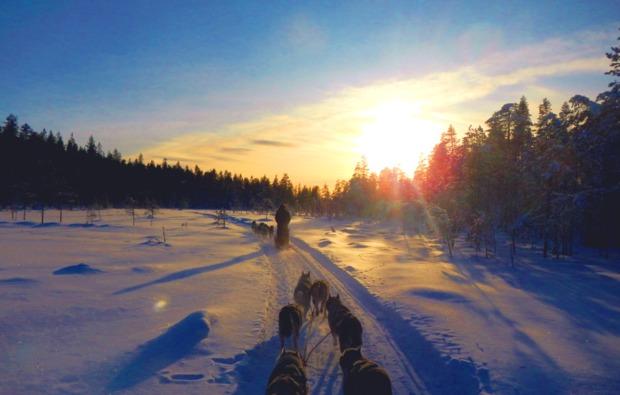 husky-abenteuer-trip-asele-sonnenuntergang