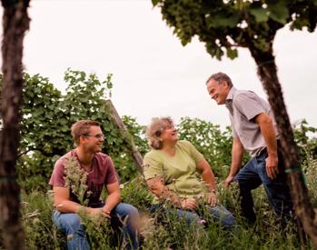 Weg zum Wein Weinbergwanderung inkl. Heurigenjause & Verkostung von 4 Weinen