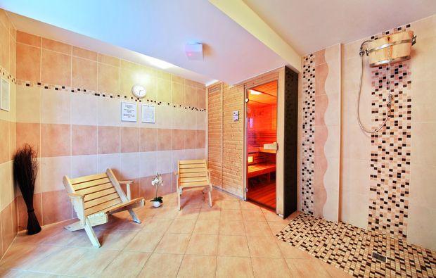 wellnesshotels-hlubok-nad-vltavou-sauna