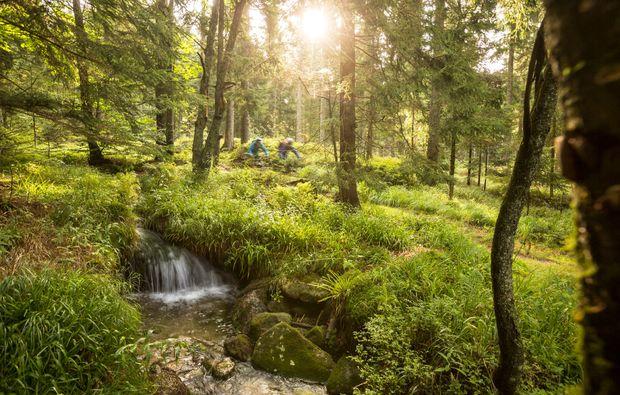 mountainbike-kurs-viechtach-umwelt