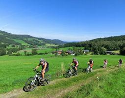 Mountainbike-Kurs Viechtach