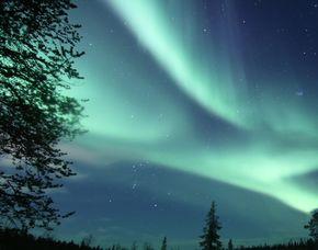 Northern Lights Village - 1 night - Saariselkä Aurora-Nordlicht Kabine mit Glasdach - mit Frühstück und Dinner