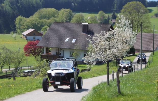 buggy-fahren-meissenheim-fahrspass
