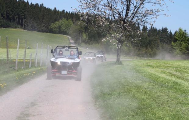 buggy-fahren-meissenheim-geschwindigkeit