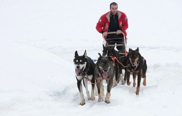 schlittenhunde-fahrt-trentino-suedtirol1510843750