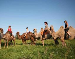 1-kamel-reiten1219651119