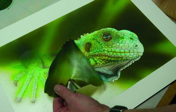 airbrush-workshop-hamburg-frosch