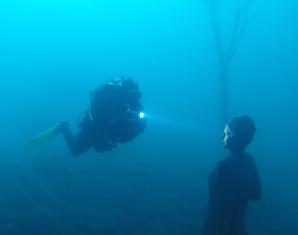 Open Water Diver / * Bronze – Nordhausen 4 Theorie, 4 Pool & 4 Freiwasser Einheiten