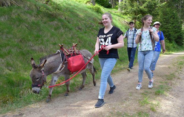 esel-trekking-heinade
