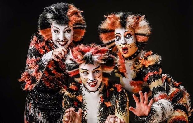 musical-dinner-bad-kreuznach-cats