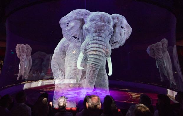 circus-roncalli-zirkus-linz-holografie