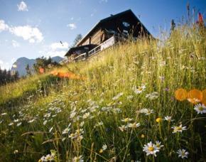 Berghütten-Kurzurlaub Steiermark - 2 ÜN - Mödlinger Hütte - Admont/Johnsbach Mödlinger Hütte – Frühstück, Abendessen