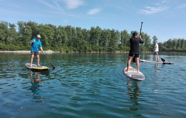 stand-up-paddling-rhein-speyer-wassersport