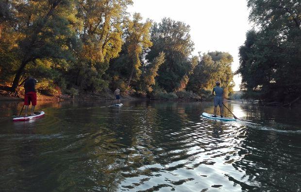 stand-up-paddling-speyer-rhein
