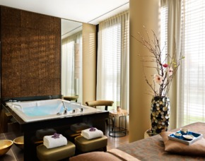 Day Spa Wellness - Hyatt Regency Düsseldorf - Düsseldorf Whirlpool, Sauna, Signature Massage, Fruchtcocktail