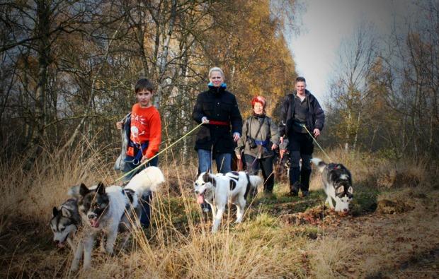 husky-trekking-twistringen-bg1