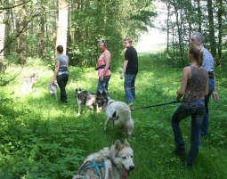 husky-trekking3
