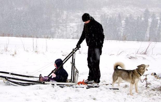schlittenhunde-musher-neuhof-hauswurz