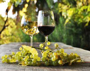 Weinseminar (Weinkenner-Seminar) für Fortgeschrittene mit Verkostung