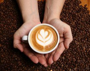 Kaffee - Kurs - Berlin mit Verkostung