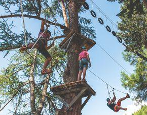Kletterparcours im Waldseilgarten - Innerkrems Waldseilgarten – 4 Stunden