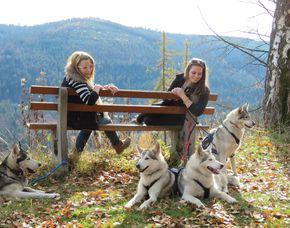 Schlittenhunde Tageskurs Schlittenhunde Tageskurs - 6 Stunden