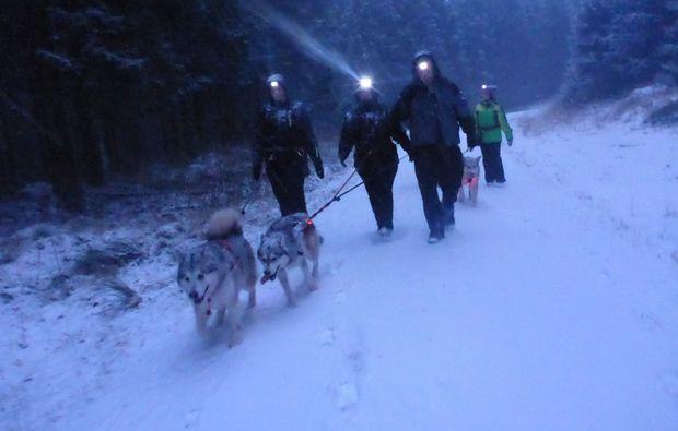 husky-abenteuer-trip-clausthal-zellerfeld-nacht
