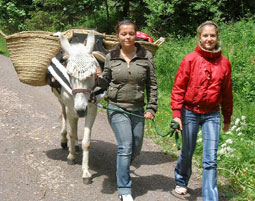 Esel-Trekking-Tour Lenzkirch Lenzkirch - 5,5 Stunden