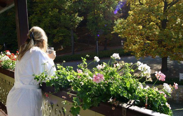 wellness-wochenende-deluxe-quedlinburg-ot-bad-suderode-garten