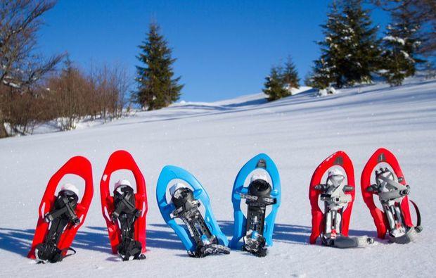 biathlon-schneeschuh-kuehtai