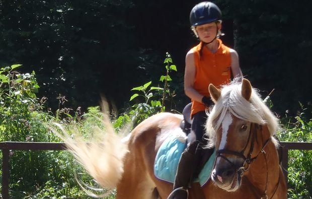 familienurlaub-gams-bei-hieflau-pferd