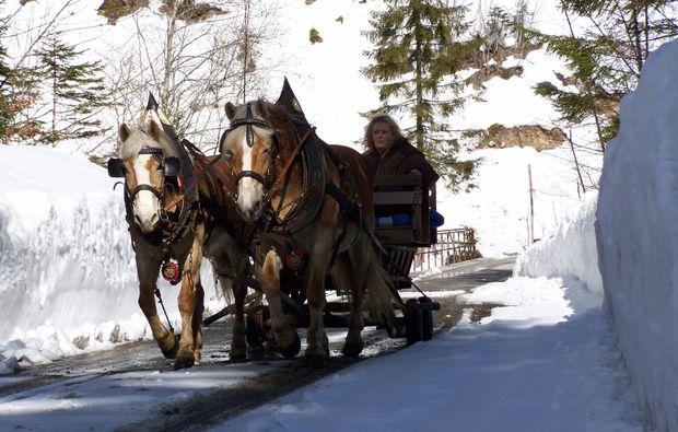familienurlaub-gams-bei-hieflau-winter