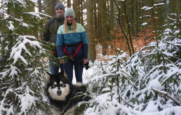 husky-trekking-ruethen-bg2