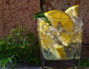 After Work Tasting - Gin - München von 5 Sorten Gin