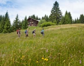 Übernachtung auf der Alm für Zwei Deluxe Oberstdorf Wannenkopfhütte - 3-Gänge-Menü