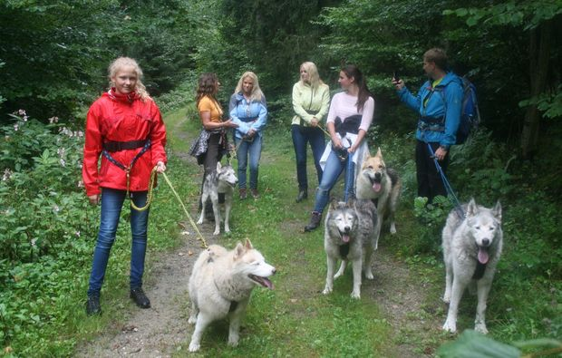 husky-familientrip-kollnburg