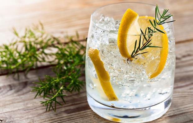 gin-tasting-in-berlin-verkostung