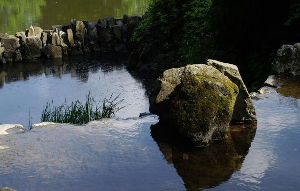 fototour-kassel-natur