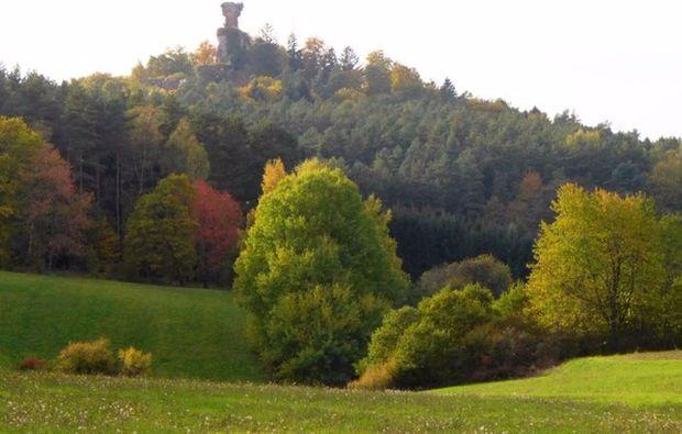 segway-panorama