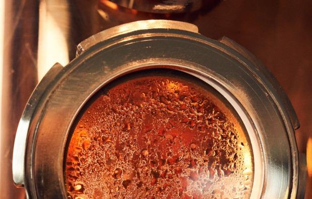 gin-tasting-hamburg-bg4
