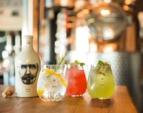 Gin Tasting Hamburg