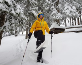 Schneeschuh Wanderung - ca. 2,5 Stunden Abtenau Wanderung - ca. 2,5 Stunden