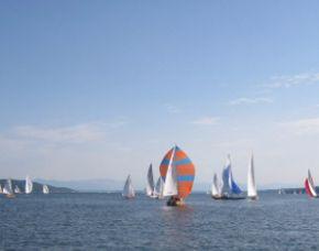 Regattasegeln - 4 Stunden Starnberger See, inkl. Kleine Brotzeit & Getränke - ca. 4 Stunden