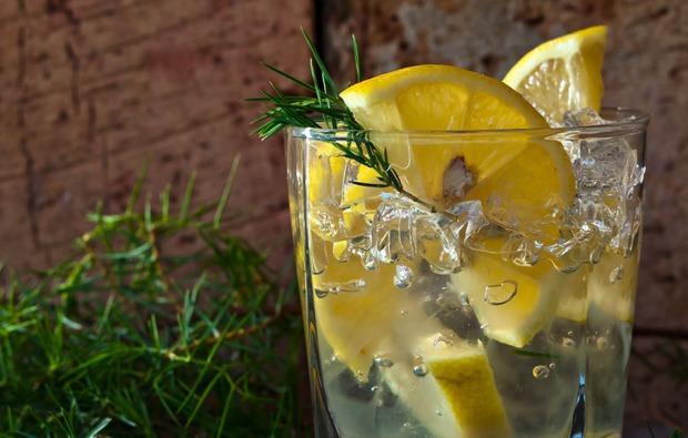 stuttgart-gin-tasting-verkostung