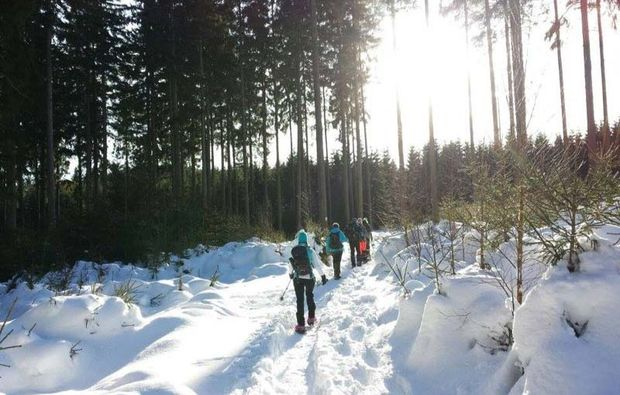 schneeschuh-wanderung-wernigerode-harz-wald