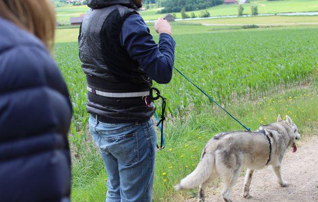 husky-trekking-kulz-route