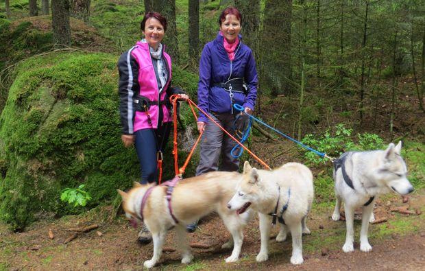 trekking-husky-kulz