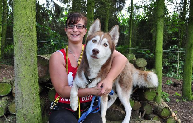 husky-pflegen-goch